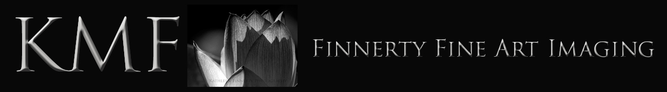 Finnerty Fine Art Imaging